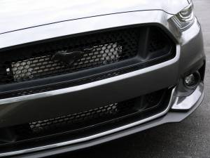 Procharger - 2015 to 2017 MUSTANG GT 5.0 4V Stage II Intercooled System with Factory Airbox and P-1SC-1 - Image 2