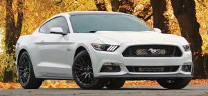 Procharger - 2015 to 2017 MUSTANG GT 5.0 4V Stage II Intercooled Tuner Kit with Factory Airbox and P-1SC-1 - Image 4