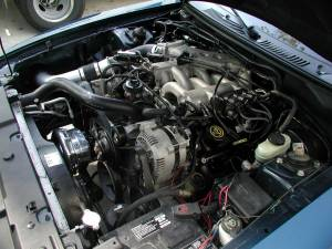 Procharger - 1994 to 1998 MUSTANG V6 3.8, 3.9 High Output Intercooled System with P-1SC - Image 2