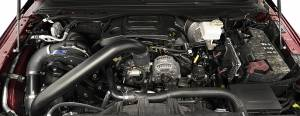 RAM - Full System - Procharger - 2019 to 2019 DODGE  RAM 1500 5.7 Stage II Intercooled System with P-1SC-1 (dedicated 8-rib drive)