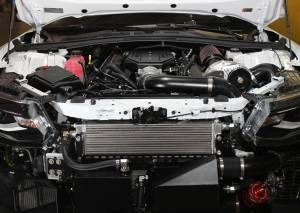 Procharger - 2019 to 2016 CADILLAC CTS-V  LT4 Stage II Intercooled Tuner Kit with D-1SC - Image 2